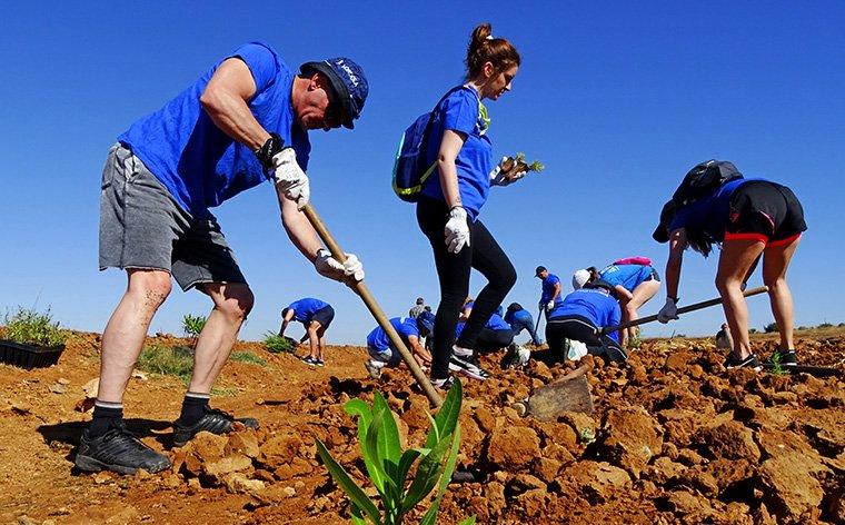 Voluntarios de la marea azul de Hidrogea plantan un seto